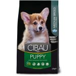 CIBAU dog puppy medium