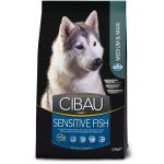 CIBAU dog adult sensitive fish medium & maxi